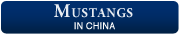 Mustangs in China